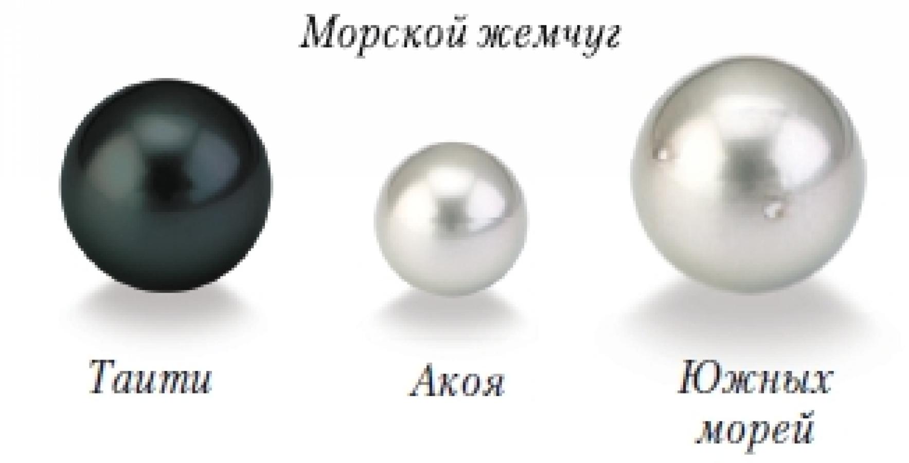 основные свойства стоимость и качество морского черного жемчуга обязательно одевается голое